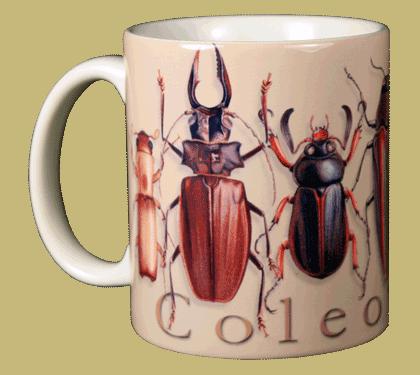 Coleoptera Ceramic Mug