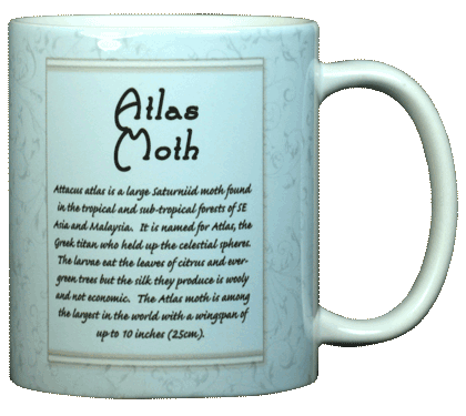Atlas Moth Ceramic Mug - Back
