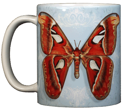 Atlas Moth Ceramic Mug