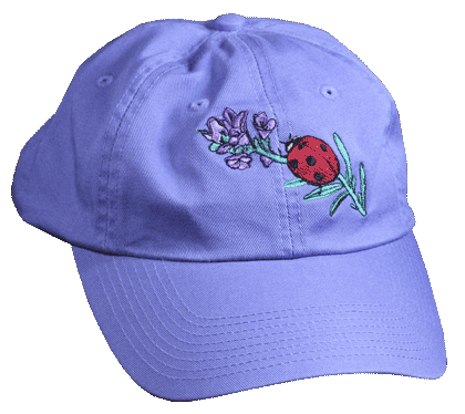 Ladybug Embroidered Cap - Front