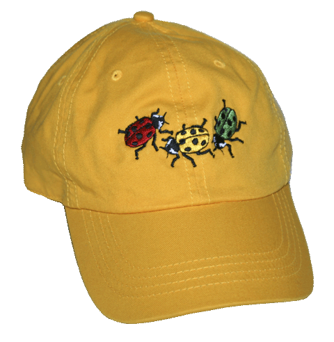Ladybug Fun Adult Embroidered Cap