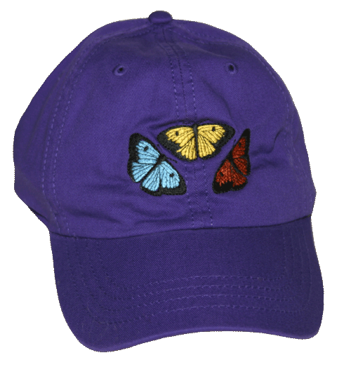 Butterfly Fun Adult Embroidered Cap - Front