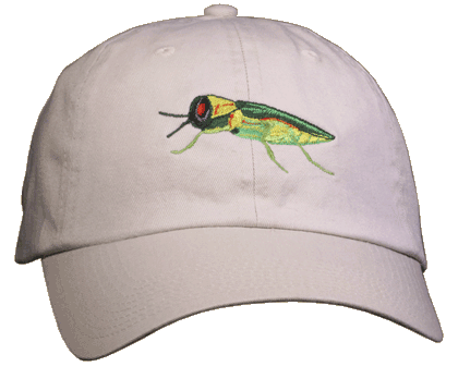 Emerald Ash Borer Embroidered Cap