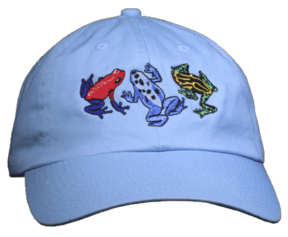 Dart Frog Fun Adult Embroidered Cap - Sky Blue