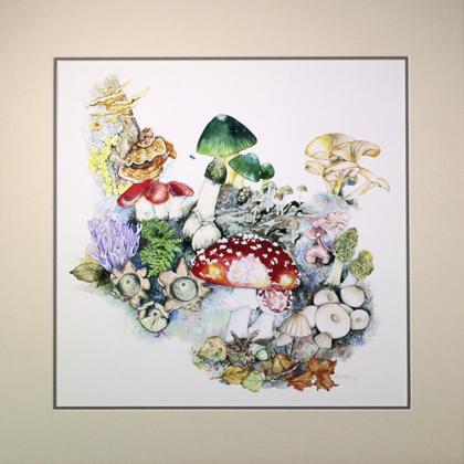 Mushrooms Matted Print