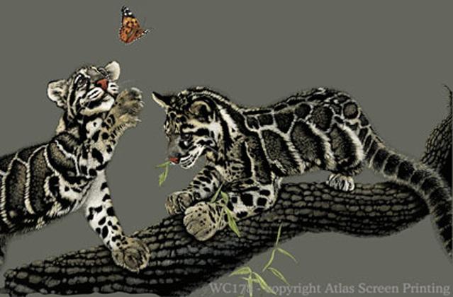 Clouded Leopard Pair 2