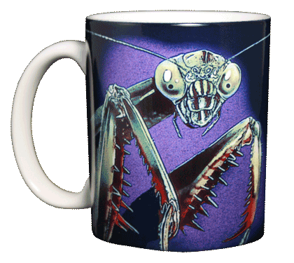 Preying Mantis Ceramic Mug - Front