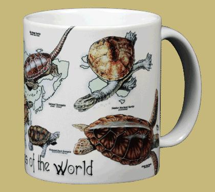 Turtles of the World Ceramic Mug - Back