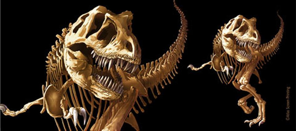 T-Rex Skeleton Ceramic Mug - Template