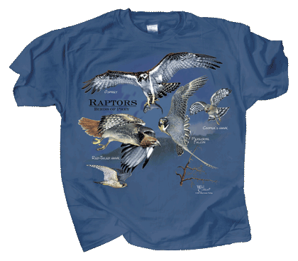 Birds of Prey Adult T-shirt