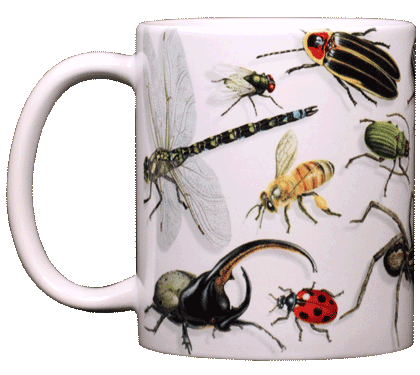 Backyard Arthropod Ceramic Mug - Front