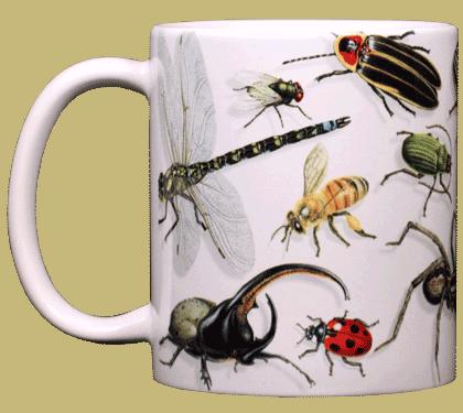Backyard Arthropod Ceramic Mug - Front