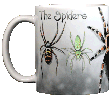Spiders Ceramic Mug - Front