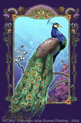 Peacock Splendor 2