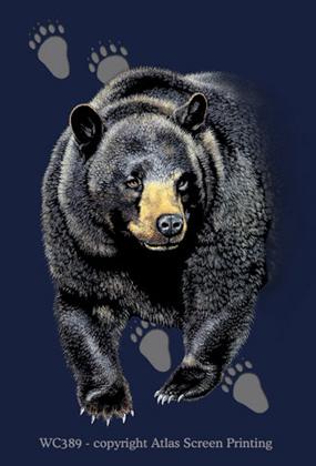 Bear Trax 2