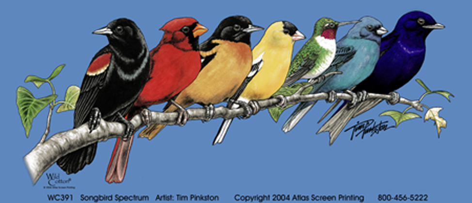 Songbird Spectrum Adult T-shirt - Front