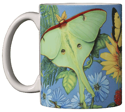 Butterfly Spectrum Ceramic Mug - Front