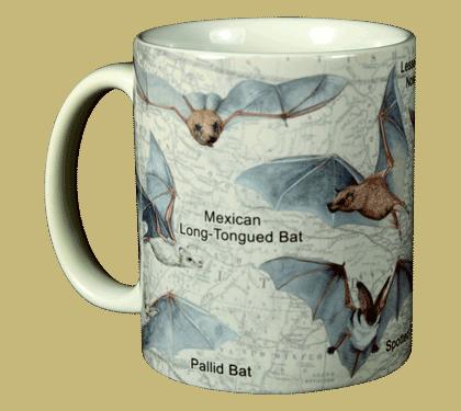 Bats of NA Ceramic Mug - Front