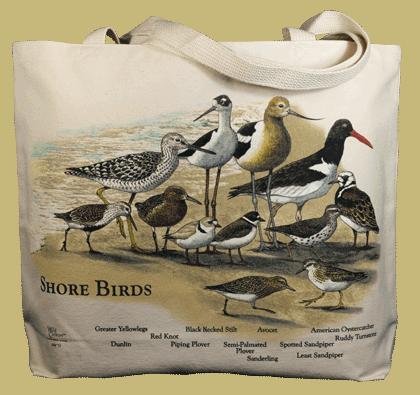 Shorebirds Canvas Tote