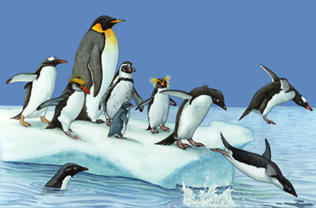 Penguins of the World 2