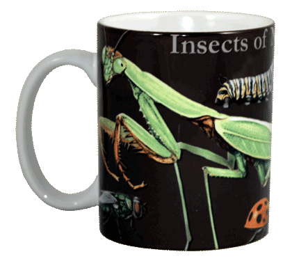 Insects of NA Ceramic Mug - Front