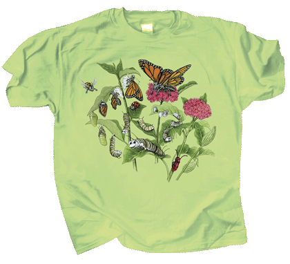 Butterfly Lifecycle Youth T-shirt - Front