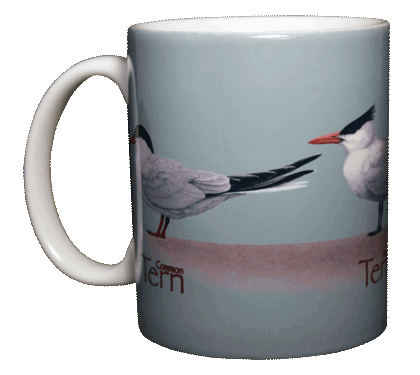 Tern, Tern, Tern Ceramic Mug - Front