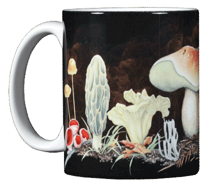 Mushrooms Ceramic Mug - Front