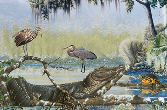 """Southern Wetlands 2"""" X 3"""" Magnet"""