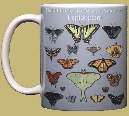 Lepidoptera Ceramic Mug - Front