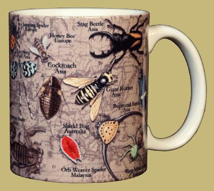 Insects, Etc. Ceramic Mug - Back