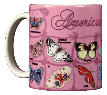 Butterfly ABC Ceramic Mug - Front