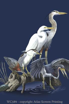 Wading Birds 2