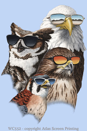 "Cool Raptors 2"" X 3"" Magnet"