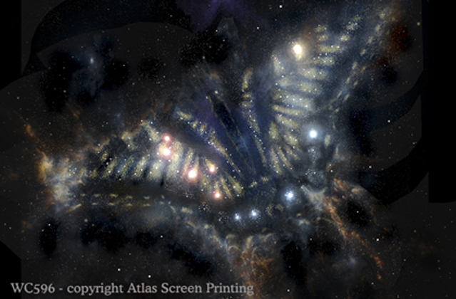 """Swallowtail Nebula 2"""" X 3"""" Magnet"""