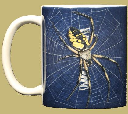 Big Spider Ceramic Mug - Front