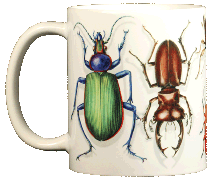 Beetle Circle Ceramic Mug - Front