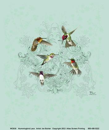Hummingbird Lace Ladies Scoop Neck Tee - Front