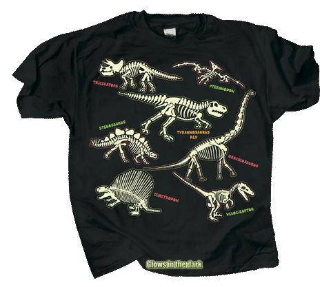Electric Dinos Youth T-shirt - Front