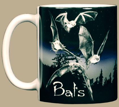 Discharge Bats Ceramic Mug - Front