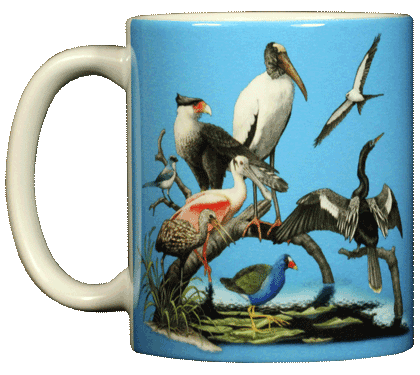 Florida Birds Ceramic Mug - Front