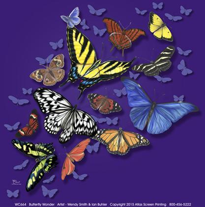 Butterfly Wonder Ladies Scoop Neck T