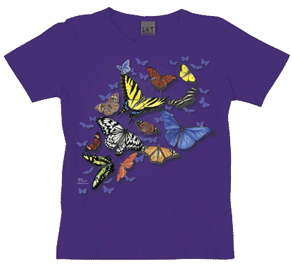 Butterfly Wonder Ladies Scoop Neck T - Front