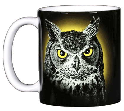 Eye of the Owl Ceramic Mug - Front