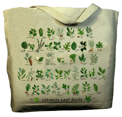 Ultimate Leaf Guide Canvas Tote