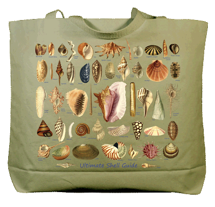 Ultimate Seashell Guide Canvas Tote