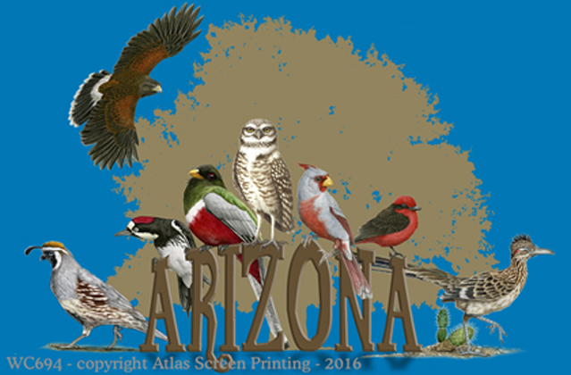 Arizona Birds 2