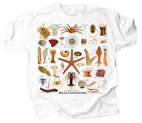 Ultimate Marine Invertebrates Adult T-shirt