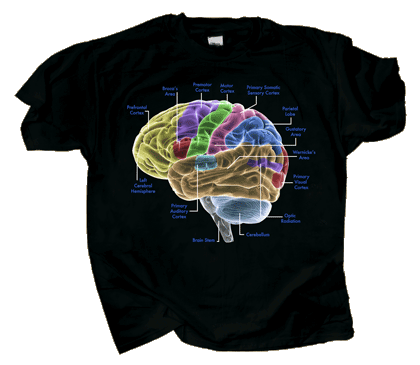 Glow Brain Adult T-shirt