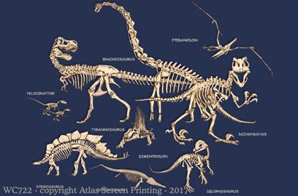 Dinosaur Bones 2